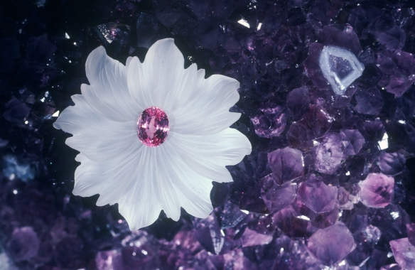 pink sapphire photo