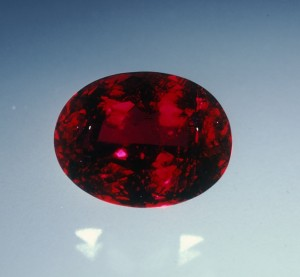 rubellite for blog 2